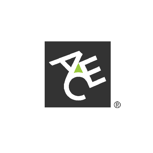 Ace Insurance Group